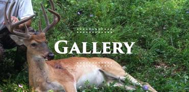 Gallery-Buckeye-Hunting
